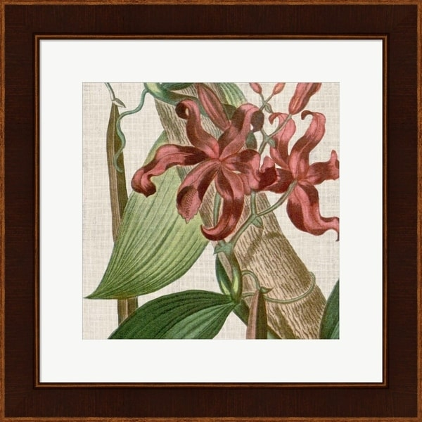 Vision Studio 'Cropped Turpin Tropicals IX' Framed Art