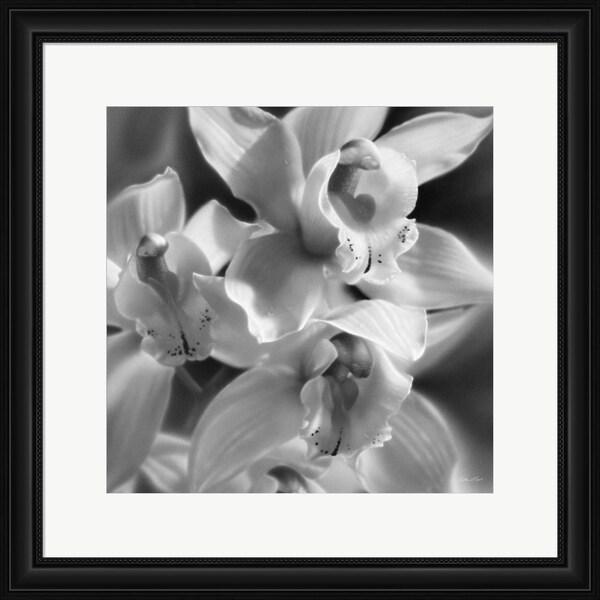 Collin Bogle 'Orchids - B&W' Framed Art