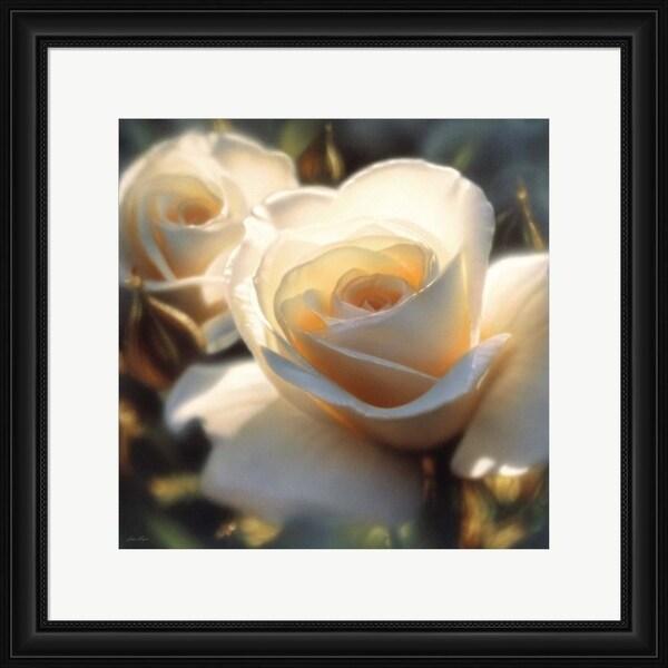 Collin Bogle 'White Rose - Colors of White - Square' Framed Art