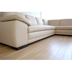 Tan Leather Sofa and Chaise Set