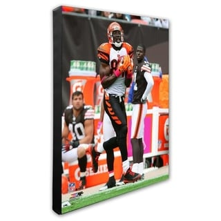 Terrell Owens 16x20 Stretched Canvas