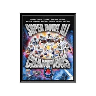 Indianapolis Colts 16x20 Framed Print