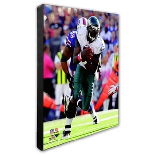 Michael Vick 20x24 Stretched Canvas
