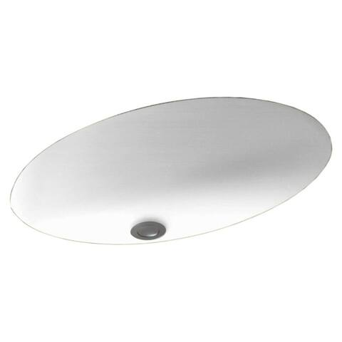 Swan 22.5-in W x 16-in D x 5.625-in H Solid Surface Undermount Bathroom Sink