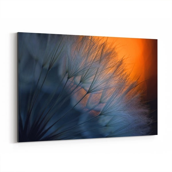 Noir Gallery Dandelion Bokeh Photography Canvas Wall Art Print