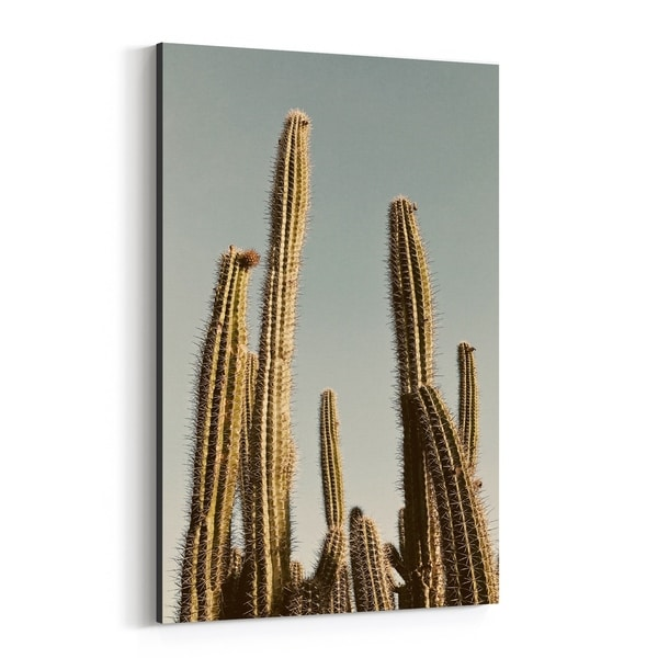 Noir Gallery Desert Cactus Nature Photography Canvas Wall Art Print
