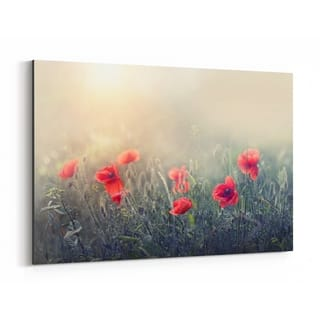 Noir Gallery Red Poppy Flowers Botanical Canvas Wall Art Print