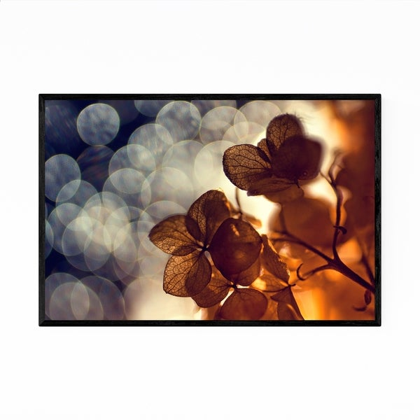 Noir Gallery Floral Botanical Photography Framed Art Print