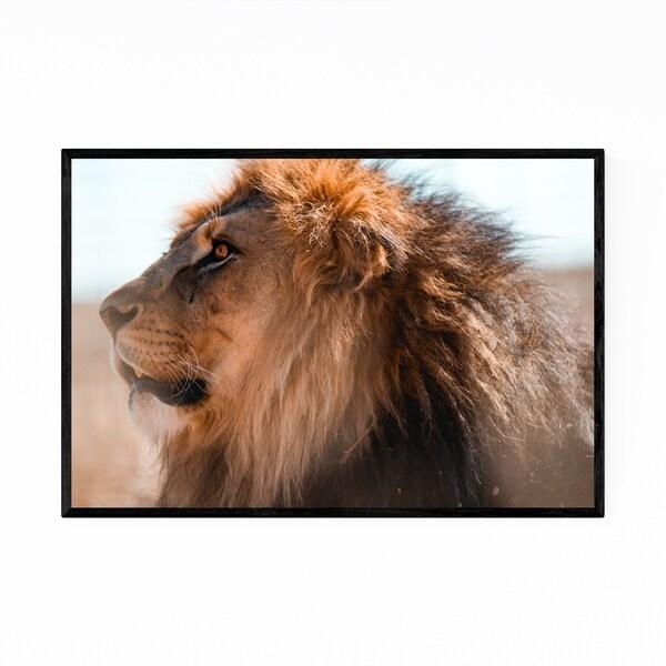 Noir Gallery Lion Animal Kalahari Desert Africa Framed Art Print