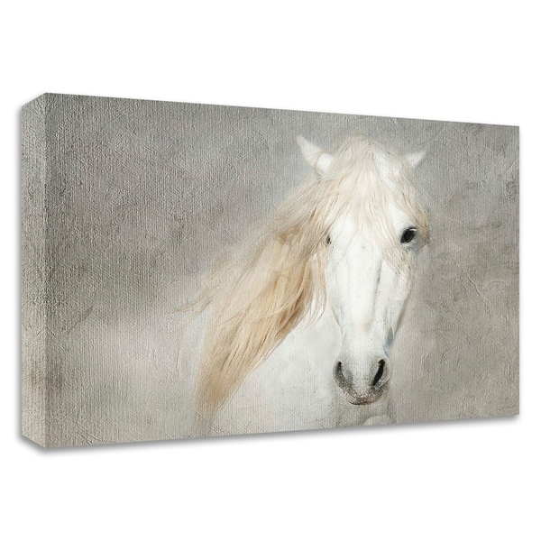 """""""Stallion Face"""" by Merrie Asimow, Print on Canvas, Ready to Hang"""
