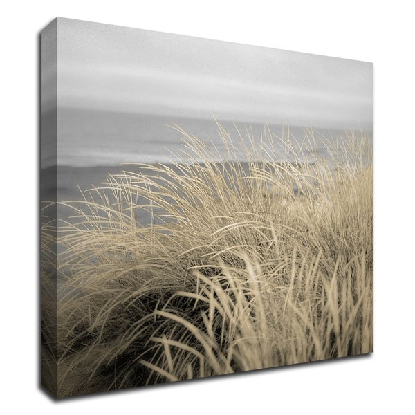 """""""Tuscan Dunes 2A"""" by Alan Blaustein, Print on Canvas, Ready to Hang"""