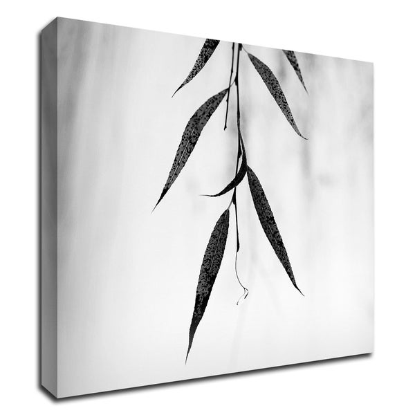 """""""Willow Print No. 2"""" by Nicholas Bell, Print on Canvas, Ready to Hang"""