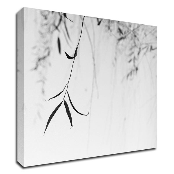 """""""Willow Print No. 1"""" by Nicholas Bell, Print on Canvas, Ready to Hang"""