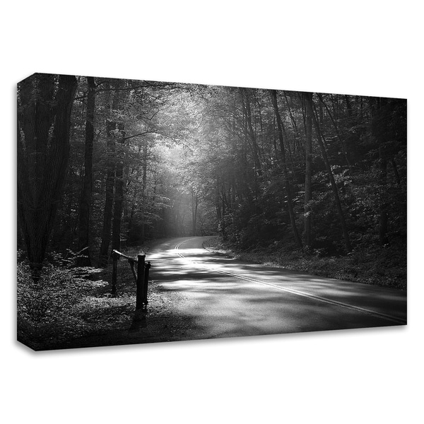 """Tremont Road, Smoky Mountains"" by Nicholas Bell, Print on Canvas, Ready to Hang"