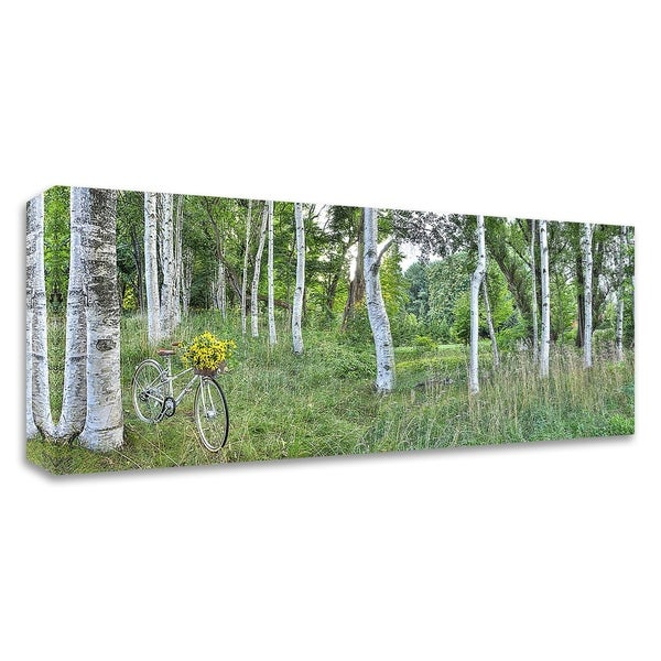 """""""Sunflower Bike Ride No.4"""" by Alan Blaustein, Print on Canvas, Ready to Hang"""
