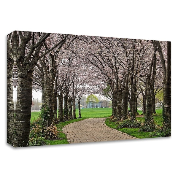 """Cherry Blossom Path"" by Chuck Burdick, Print on Canvas, Ready to Hang"