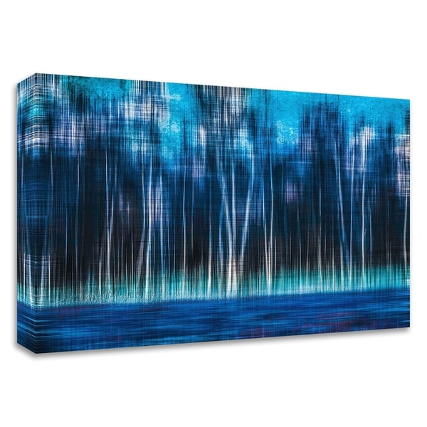 """Mystic Forest"" by Hannes Cmarits, Print on Canvas, Ready to Hang"