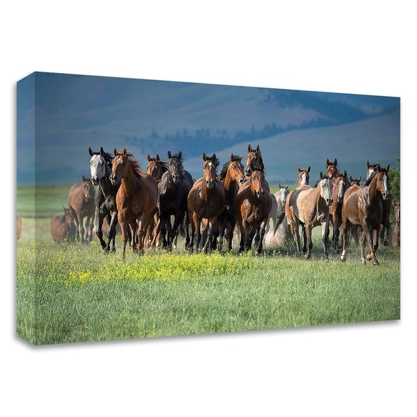 """""""Montana Thunder"""" by Lisa Dearing, Print on Canvas, Ready to Hang"""
