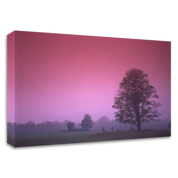 """""""Evening Fields"""" by PhotoINC Studio, Print on Canvas, Ready to Hang"""