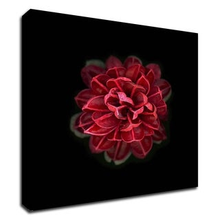"""""""In Red"""" by PhotoINC Studio, Print on Canvas, Ready to Hang"""