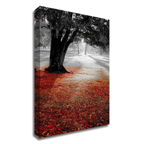 """""""Autumn Contrast"""" by PhotoINC Studio, Print on Canvas, Ready to Hang"""