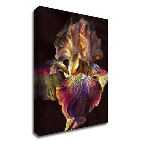 """Iris"" by PhotoINC Studio, Print on Canvas, Ready to Hang"