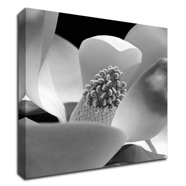 """Fibonacci 1"" by PhotoINC Studio, Print on Canvas, Ready to Hang"