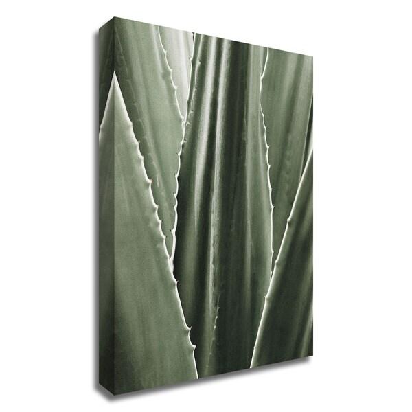 """Leaf I"" by Incado, Print on Canvas, Ready to Hang"