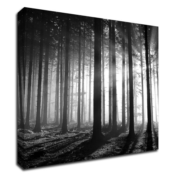 """""""Wood Light"""" by PhotoINC Studio, Print on Canvas, Ready to Hang"""