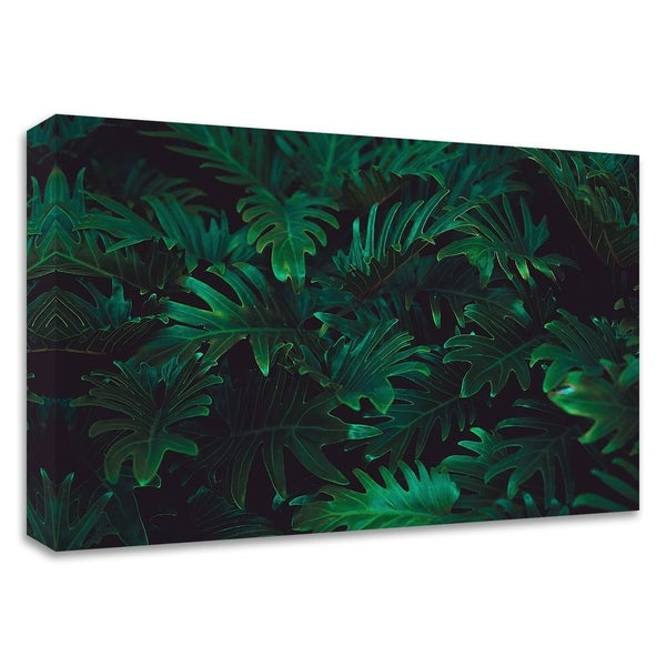 """Tropical 2"" by PhotoINC Studio, Print on Canvas, Ready to Hang"