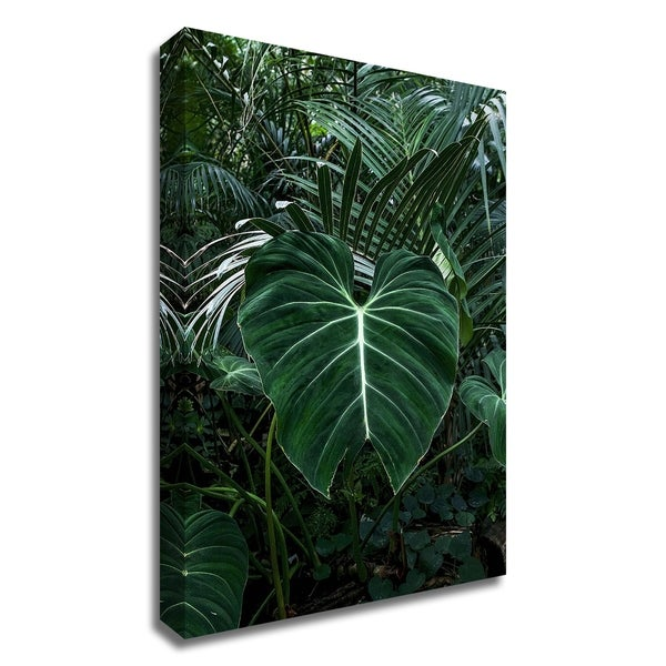 """Tropical 3"" by PhotoINC Studio, Print on Canvas, Ready to Hang"
