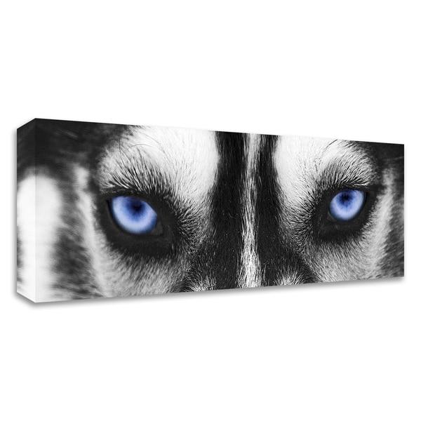 """Husky"" by PhotoINC Studio, Print on Canvas, Ready to Hang"