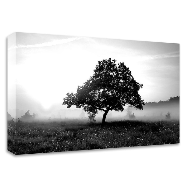 """""""Solemn Tree"""" by PhotoINC Studio, Print on Canvas, Ready to Hang"""