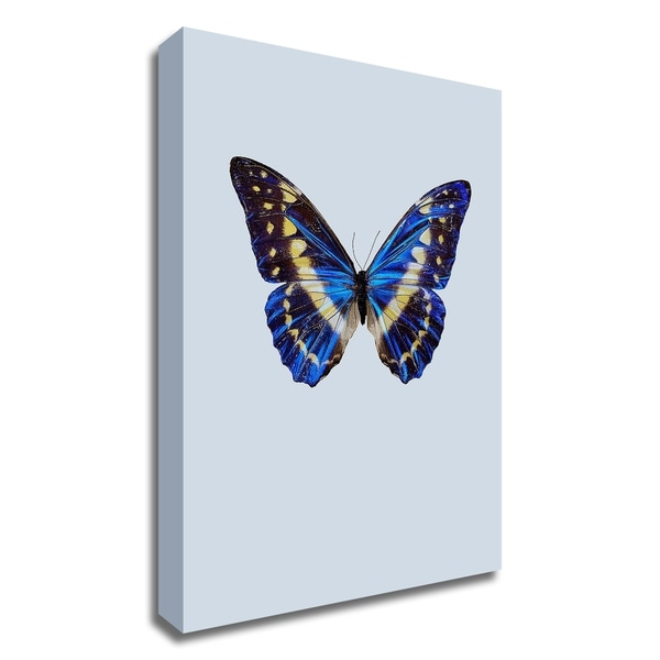 """Blue Butterfly"" by Incado, Print on Canvas, Ready to Hang"