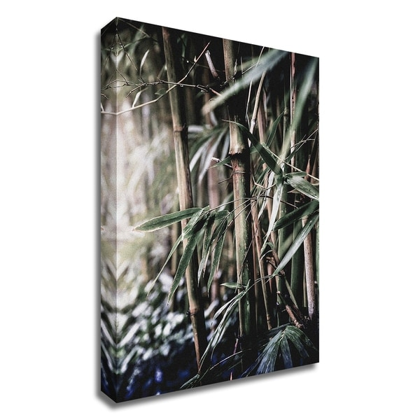 """Leaf III"" by Incado, Print on Canvas, Ready to Hang"