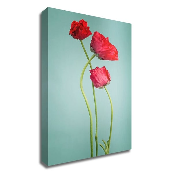 """""""Blue poppy"""" by PhotoINC Studio, Print on Canvas, Ready to Hang"""
