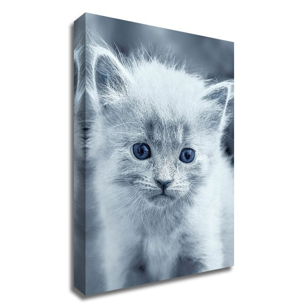 """""""Blue Kitty"""" by Tracie Louise, Print on Canvas, Ready to Hang"""