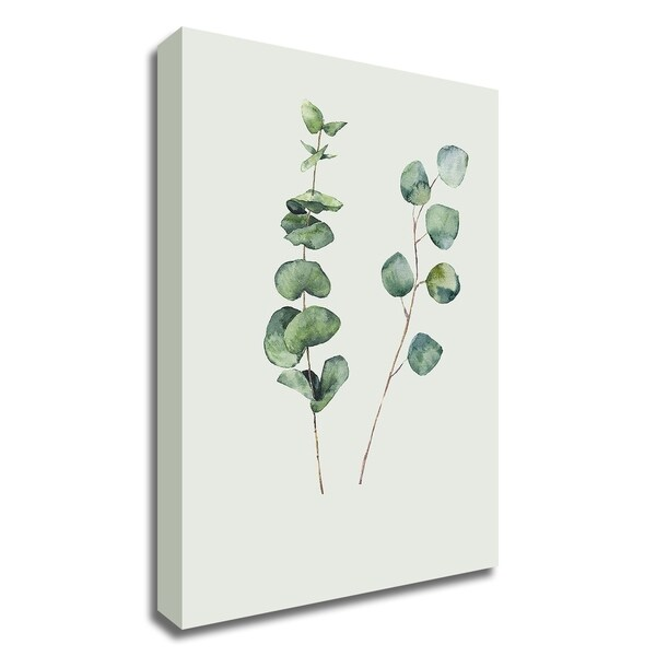 """Botanical I"" by Incado, Print on Canvas, Ready to Hang"
