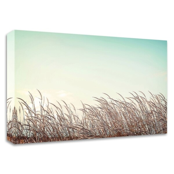 """Retro Grass"" by PhotoINC Studio, Print on Canvas, Ready to Hang"