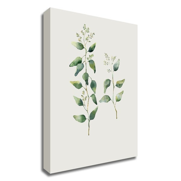"""""""Botanical II"""" by Incado, Print on Canvas, Ready to Hang"""