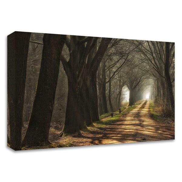 """Paths"" by Lars Van de Goor, Print on Canvas, Ready to Hang"