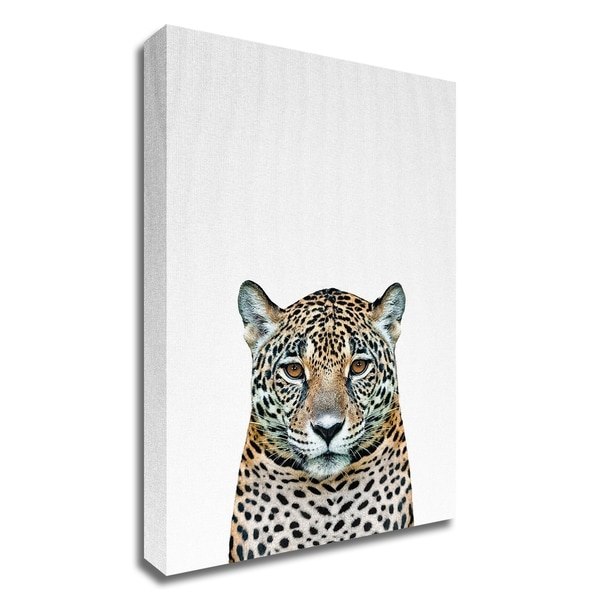 """""""Leopard II"""" by Tai Prints, Print on Canvas, Ready to Hang"""