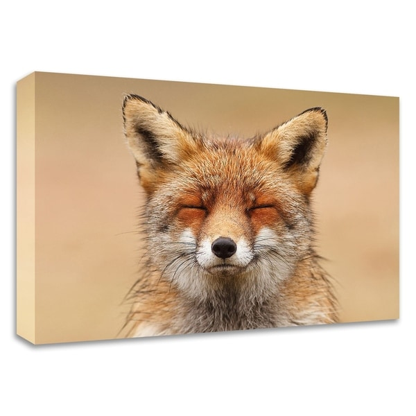 """""""ZenFoxRed Portrait"""" by Roeselien Raimond, Print on Canvas, Ready to Hang"""
