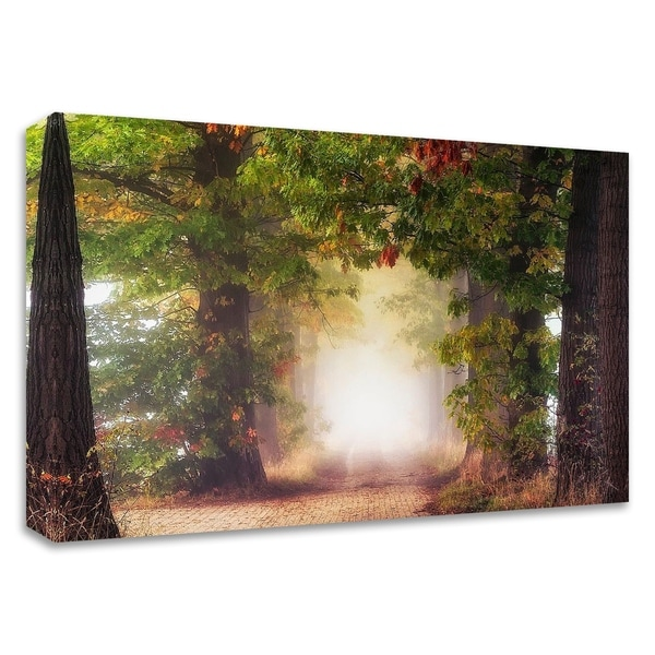 """Fall Colors"" by Lars Van de Goor, Print on Canvas, Ready to Hang"