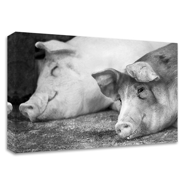 """Hog Heaven"" by Matthew Platz, Print on Canvas, Ready to Hang"