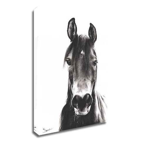 """""""Horse Portrait"""" by Eric Sweet, Print on Canvas, Ready to Hang"""