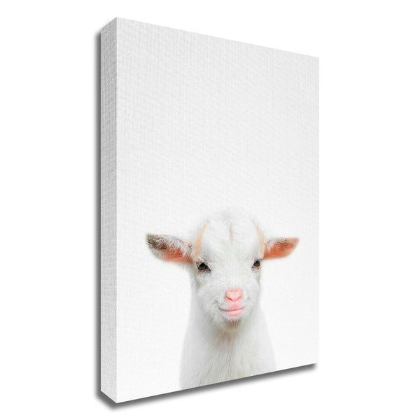 """""""Baby Goat"""" by Tai Prints, Print on Canvas, Ready to Hang"""