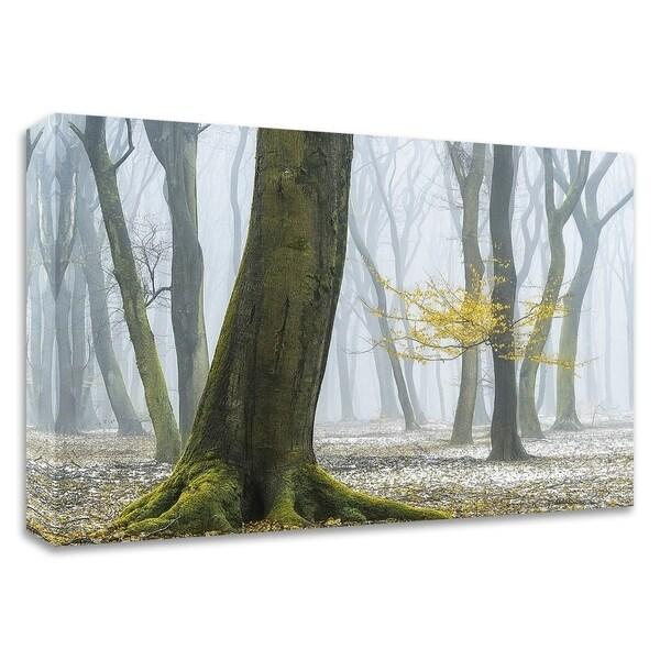 """Winter Colors"" by Lars Van de Goor, Print on Canvas, Ready to Hang"