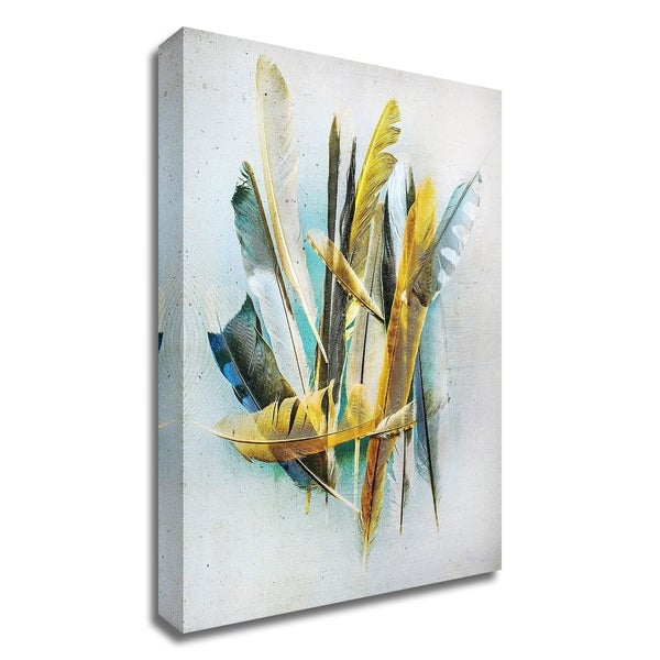 """""""Feather Study No. 2"""" by Kathy Wolfe, Print on Canvas, Ready to Hang"""