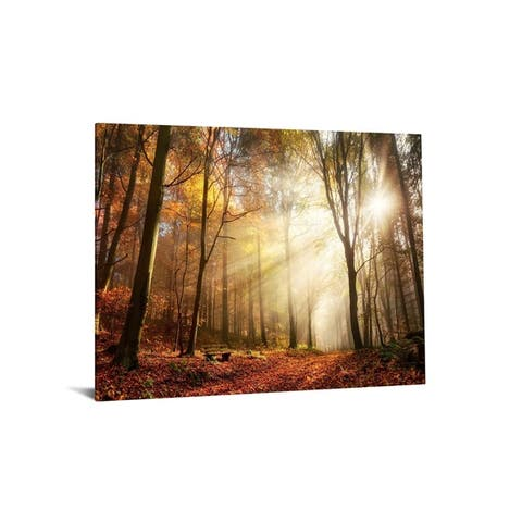 "40x60 Brilliant Tempered Glass ""Forrest Rays"" by Classy Art"